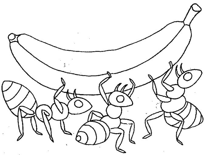 Ant Food Coloring Page & Coloring Book