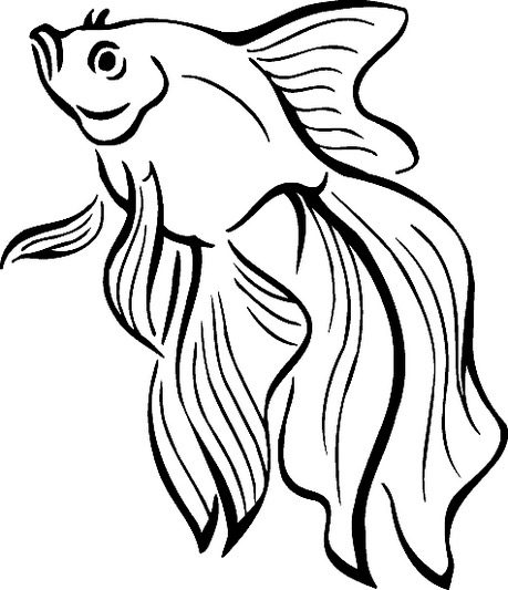 Beta Fish Coloring Page & Coloring Book