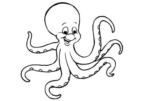 Cartoon octopus coloring page