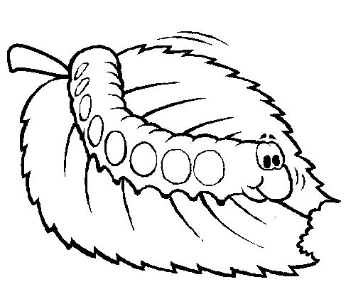caterpillar bug coloring page