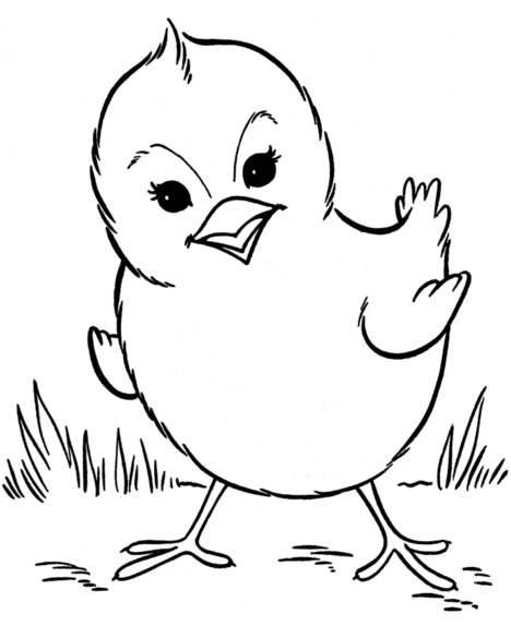 Chick Coloring Page & Coloring Book