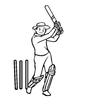 cricket-match2