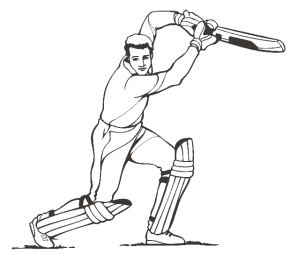 cricket-match3-coloring-picture