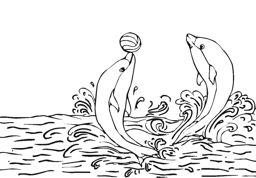 Dolphin Coloring Page & Coloring Book