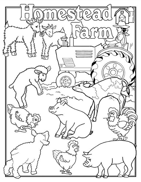 Farm Animals Coloring Page & Coloring Book