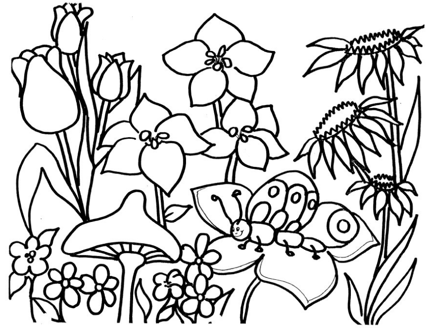 Flower garden coloring page coloring book for Garden coloring page