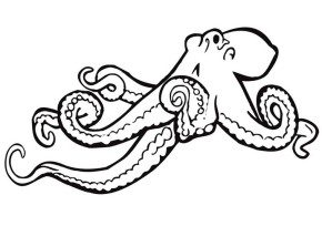 free-octopus-coloring-page
