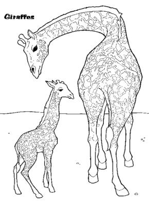 giraffe-coloring-page