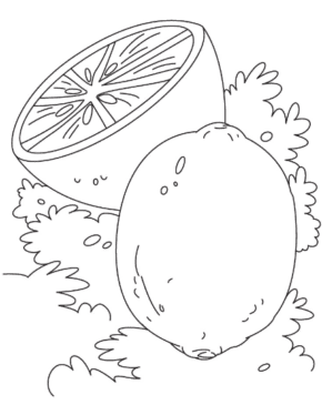 lime-coloring-page