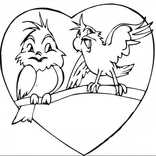 Fun Love Birds
