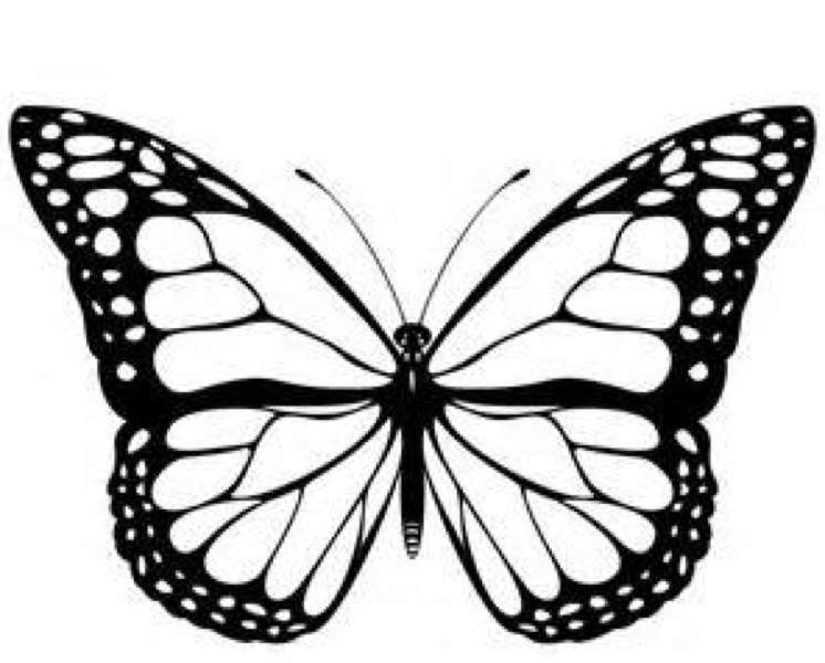 Coloring Pages Butterfly Monarch Butterfly Coloring Page & Coloring Book