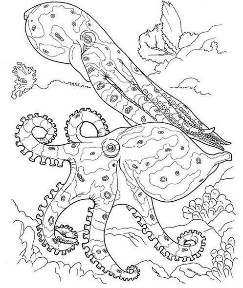 octopus ocean coloring page - Ocean Coloring Book