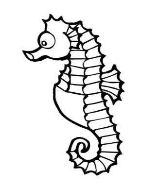 sea-horse-coloring-page