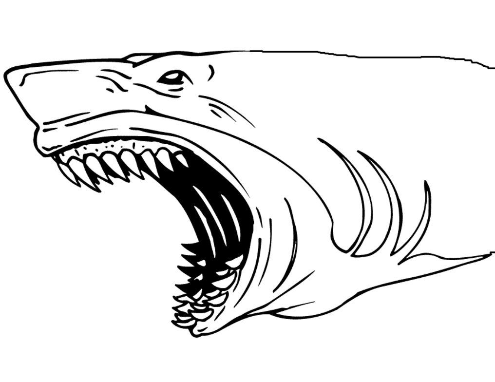Shark Jaws Coloring Page