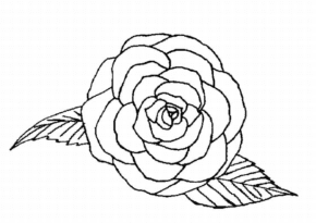 single rose coloring page - Rose Coloring Pages