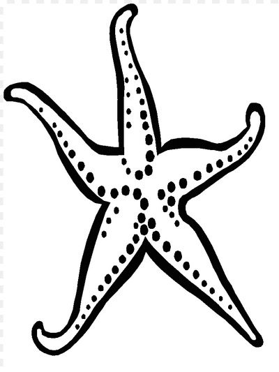 Starfish Coloring Page Coloring Book