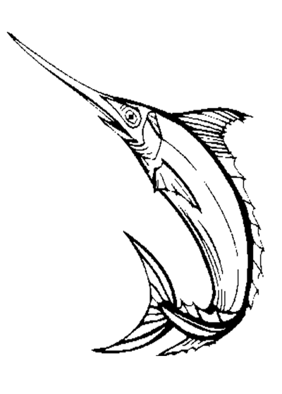 Sword Fish Coloring Page Amp Coloring Book