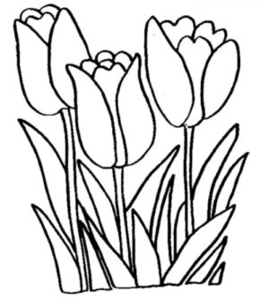Tulips Flowers Coloring Page