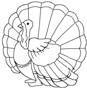 turkey-coloring-page-kids