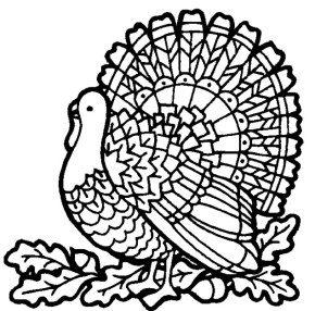 turkey-page