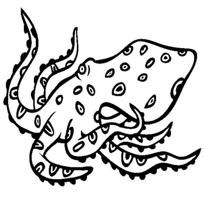 Angry Octopus Coloring Page & Coloring Book