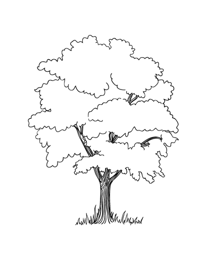 apple tree coloring page book for