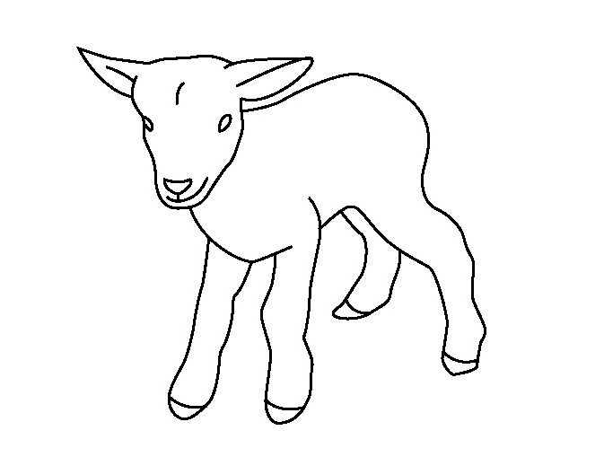 Baby Goat Coloring Page Coloring Page & Book For Kids.