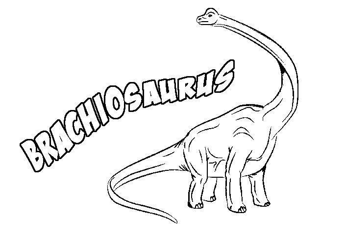Brachiosaurus & Coloring Book
