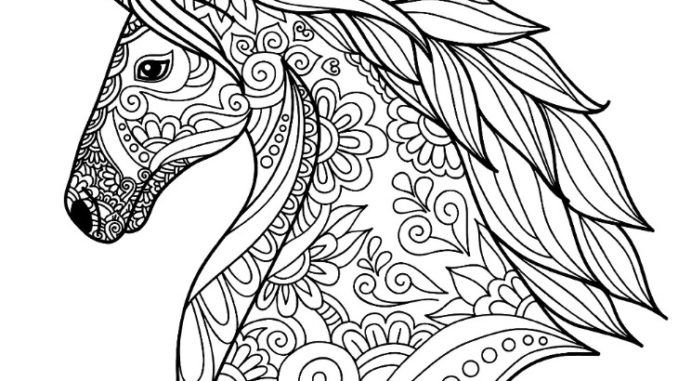 Detailed Unicorn Coloring Page | Unicorn Coloring Page Coloring book
