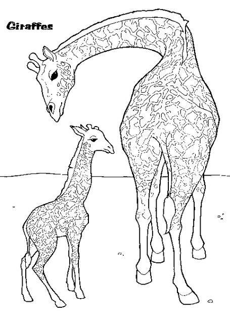 Giraffe Coloring Page & Coloring Book