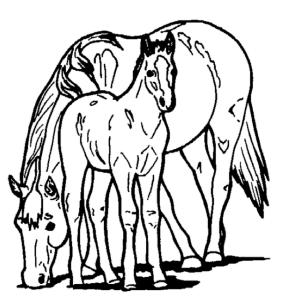 Horse And Pony Coloring Page
