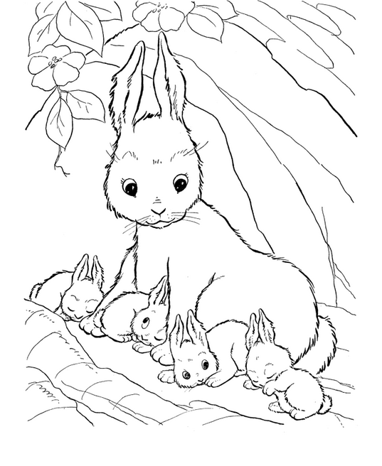 Rabbit Coloring Page & Coloring Book