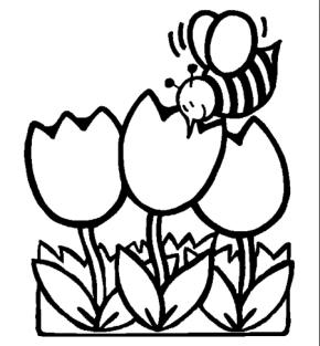 Spring : Spring Chicks Coloring Page, Spring Coloring Page, Spring ...