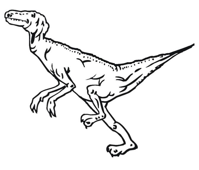 Velociraptor Coloring Page Coloring Page Book For Kids