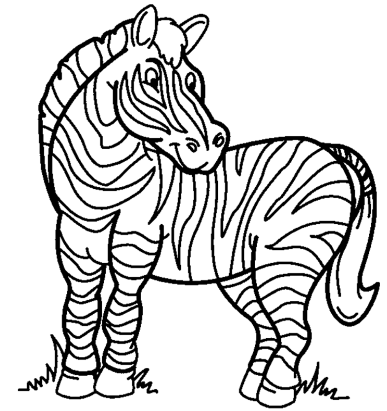 Zebra Coloring Page coloring page & book for kids.